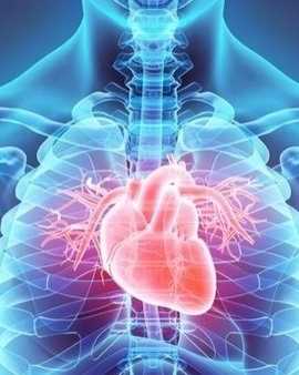 Meditation for Energy Breathing Into the Kidney – Divine Way